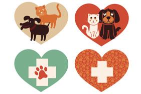 Cursos online de veterinaria