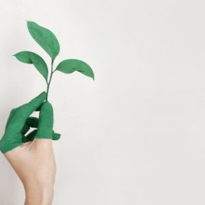 certificado-de-profesionalidad-presencial-gestion-ambiental-seag0211